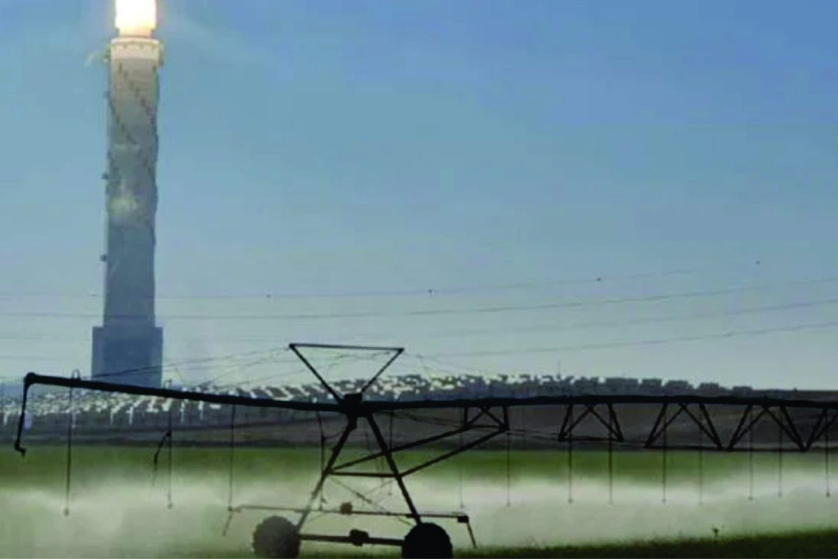 CONSEJO REGIONAL DEL NÉGUEV CREARÁ CENTRO DE INNOVACIÓN PARA IMPULSAR LA AGRICULTURA