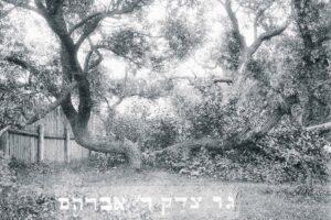 LA IMPACTANTE HISTORIA DEL  GUER TZEDEK ABRAHAM  BEN ABRAHAM